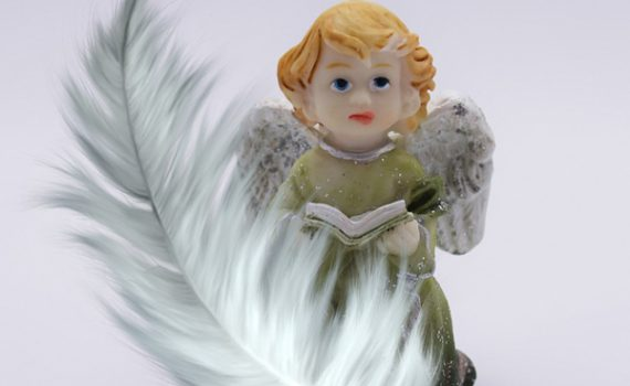 angel-sporocila